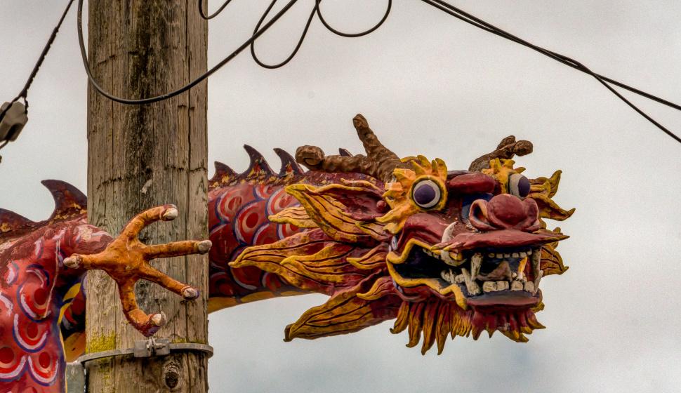 dragon on light pole
